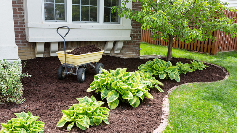 Benefits of Mulching Your Garden